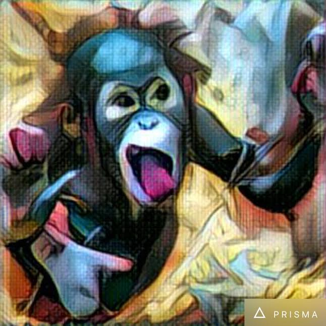 This Hot New App Turned Our Photos Of Monkeys Throwing Feces Into