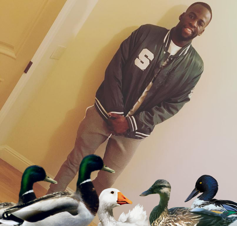 draymond w all his ducks at home