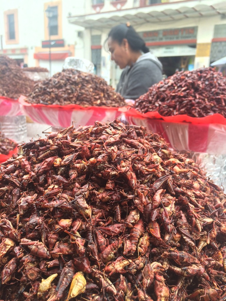 Finger foods on the streets (yes, those are crickets)